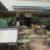 Salt-Rock-Grille-Playa-Del-Carmen